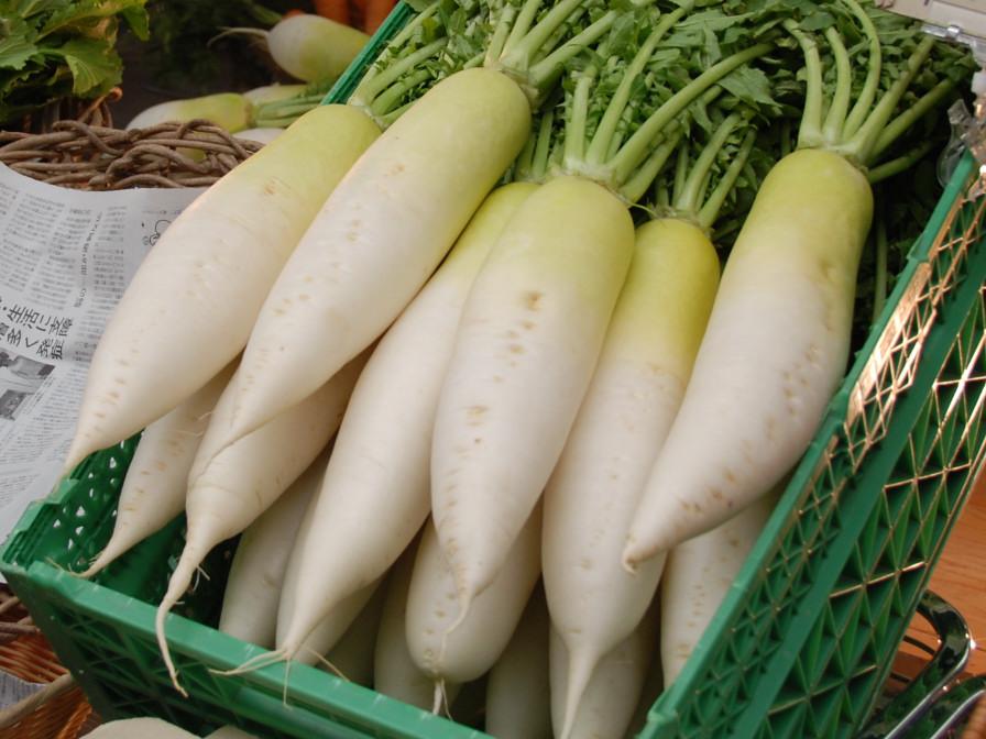 Đông ăn củ cải là đúng bài: Vừa thay thế thuốc trị bệnh, vừa dưỡng da, chống lão hóa